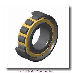 2.25 Inch | 57.15 Millimeter x 4.5 Inch | 114.3 Millimeter x 0.875 Inch | 22.225 Millimeter  CONSOLIDATED BEARING RLS-16  Cylindrical Roller Bearings