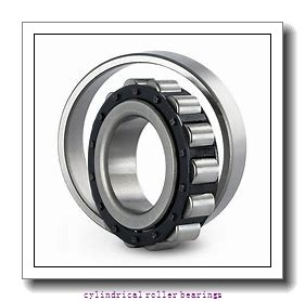 2.362 Inch | 60 Millimeter x 5.118 Inch | 130 Millimeter x 1.22 Inch | 31 Millimeter  CONSOLIDATED BEARING N-312  Cylindrical Roller Bearings