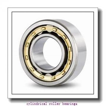 5.5 Inch   139.7 Millimeter x 9.5 Inch   241.3 Millimeter x 1.375 Inch   34.925 Millimeter  CONSOLIDATED BEARING RLS-23 1/2  Cylindrical Roller Bearings