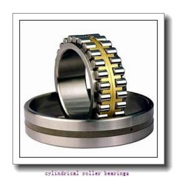 4.134 Inch | 105 Millimeter x 6.299 Inch | 160 Millimeter x 1.024 Inch | 26 Millimeter  CONSOLIDATED BEARING NU-1021 M  Cylindrical Roller Bearings
