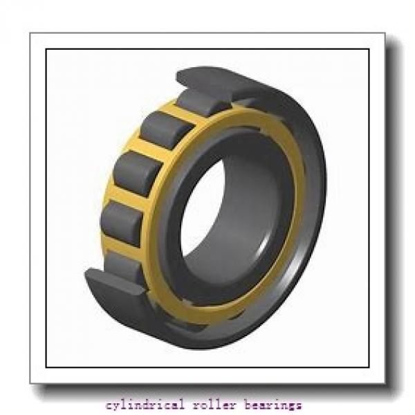 1.772 Inch | 45 Millimeter x 3.937 Inch | 100 Millimeter x 0.984 Inch | 25 Millimeter  CONSOLIDATED BEARING N-309 M C/3  Cylindrical Roller Bearings #3 image
