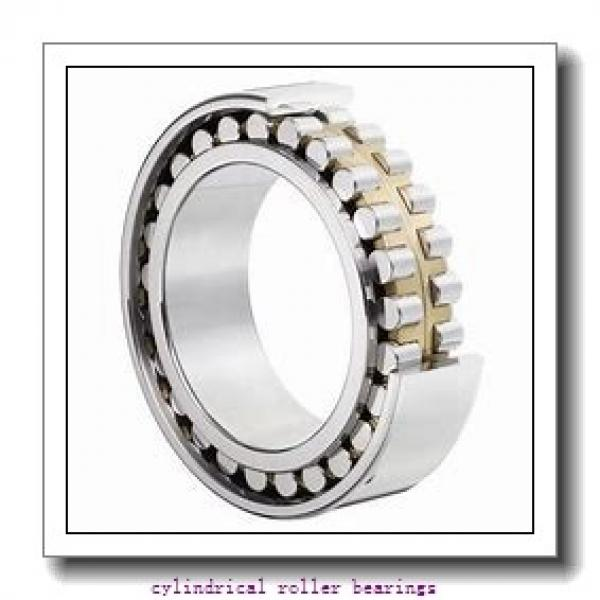 12.598 Inch | 320 Millimeter x 18.898 Inch | 480 Millimeter x 2.913 Inch | 74 Millimeter  CONSOLIDATED BEARING NU-1064 F  Cylindrical Roller Bearings #1 image
