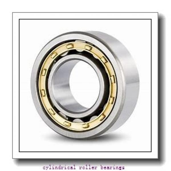 1.772 Inch | 45 Millimeter x 3.937 Inch | 100 Millimeter x 0.984 Inch | 25 Millimeter  CONSOLIDATED BEARING N-309 M C/3  Cylindrical Roller Bearings #2 image