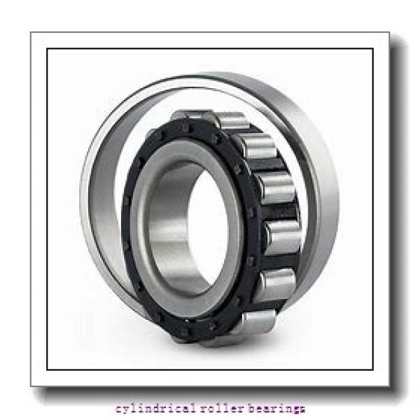 12.598 Inch | 320 Millimeter x 18.898 Inch | 480 Millimeter x 2.913 Inch | 74 Millimeter  CONSOLIDATED BEARING NU-1064 M  Cylindrical Roller Bearings #1 image
